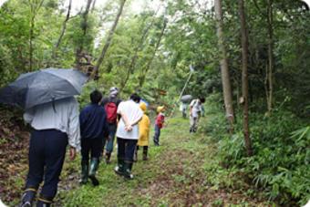 『里山の森を育てるクラブ-入門編-』を開催しました