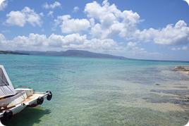 八重山諸島のサンゴの現状と未来 ~SS国内研修~
