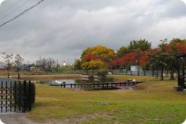 学外サイエンス研修 大阪府立環境農林水産総合研究所 水生生物センター