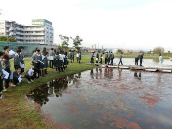 大阪府水生生物センターで研修