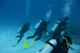 八重山諸島で「サンゴの現状と未来」を研修