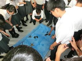 SS基礎学外サイエンス学習を実施(大阪府立環境農林水産総合研究所水産技術センター)