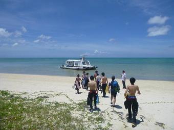 SS国内研修「八重山諸島のサンゴの現状と未来研修」を行いました