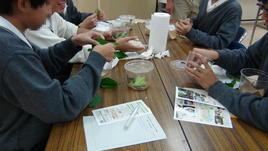 第2回 橿原市昆虫館でのSS基礎学外サイエンス学習を実施