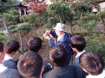 学外サイエンス学習『斑鳩フィールドワーク』を実施