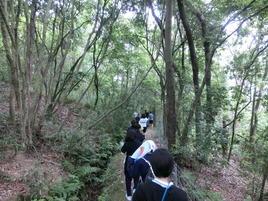 里山にて植生実習を実施(高1)