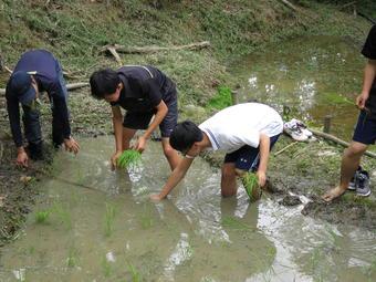 校内にある棚田で生徒が田植えを行いました。