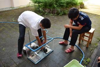 SS課題研究統一実験を実施