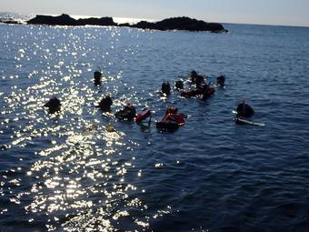 ヒトと海との共生研修第3日目報告