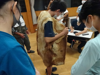 SS国内研修「森の連環学習-ブナ林とヒトの共生-研修」を行いました