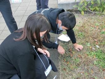 令和2年度・近畿SSH環境活動フォーラムを開催しました