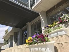 花々が彩るキャンパス